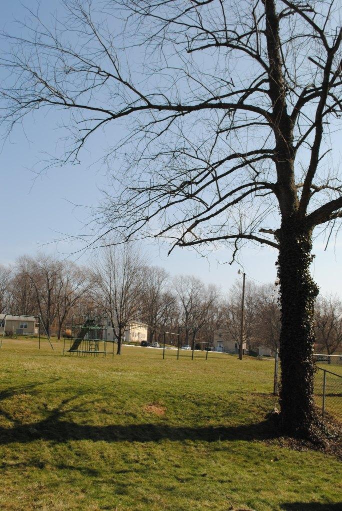 Sunny day on Playground