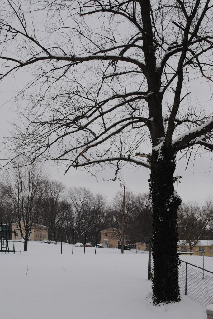 Fresh snow covered playground